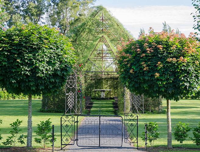 tree-church-nature2