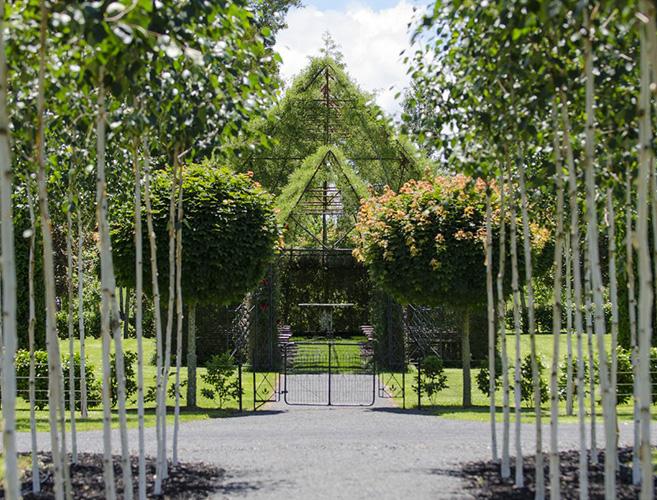 tree-church-nature4