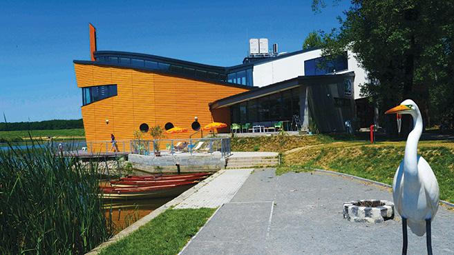 Noé modern bárkája a Desedán