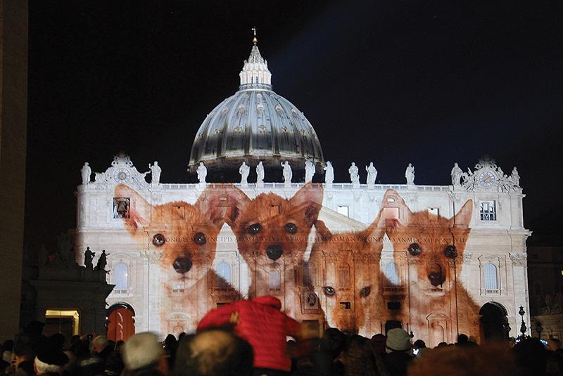 Ahogyan még sosem láttuk a Szent Péter-bazilikát. Fényjáték elevenítette meg a teremtéstörténetet