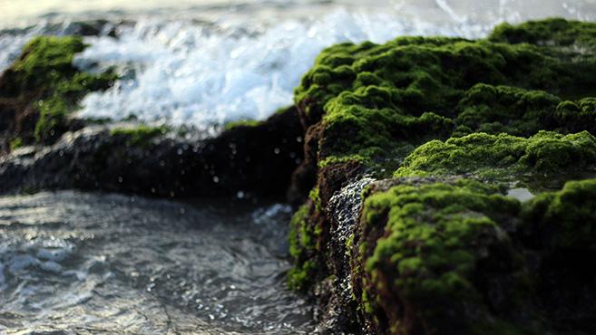 Teremtésvédelem: Gondolatok a vízről és apró tettekről