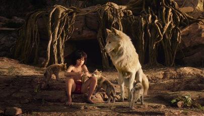 Dzsungelláz – Maugli és Tarzan visszatérései