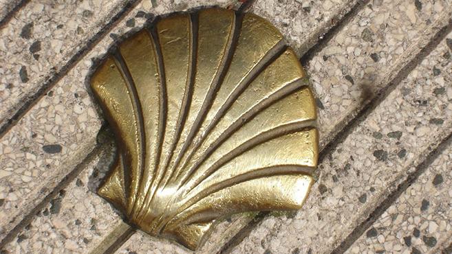 Hogyan vált a fésűkagylóa zarándoklat jelképévé?