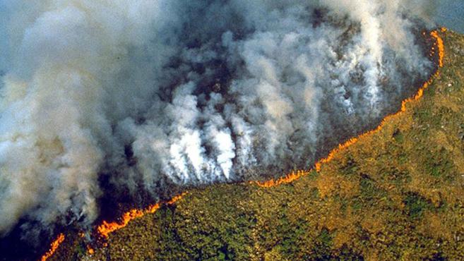 Ferenc pápa is aggodalmát fejezte ki az amazóniai erdőtüzek miatt