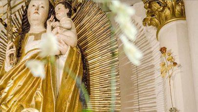 Sok hívet vonz a pápai Aranyrózsa