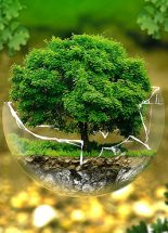 Zöldítsük vissza a földünket!